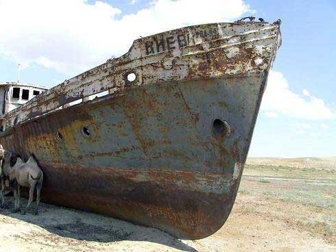 Аральское море. Июнь 2007 г.
